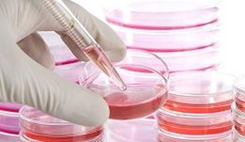 Compare Prices, Costs & Reviews for Stem Cell Therapy in Mexico